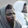 Centinaia di profughi eritrei sono tenuti prigionieri nel Sinai da bande di predoni e trafficanti di organi. La vicenda è stata denunciata circa un anno fa ma nessuno se ne occupa. Don Mussi Zerai, prete eritreo, presidente dell'agenzia Habeshia per la cooperazione […]