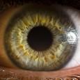 Una ricerca della Cornell University dimostra come il nostro occhio reagisca, senza che noi ce ne accorgiamo, in base al nostro orientamento sessuale. Testimonia anche che la bisessualità non è un mito e che le donne sono attratte sia da maschi che […]