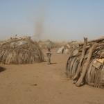 AFRICA,  MILIONI DI ETTARI SOTTRATTI AI CONTADINI