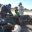 Al villaggio si arriva da Grootfontein, una piccola città coloniale che sembra ferma a cent'anni fa, nel nord della Namibia, dopo circa 60 chilometri lungo la statale B8 e 90 di sterrato in mezzo al nulla, fino al posto di blocco della […]