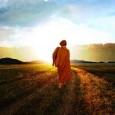Le funzioni di adattamento e di cambiamento fanno parte del corredo individuale e sociale della nostra struttura psichica. Per quanto riguarda l'aspetto sociale, nella storia dell'evoluzione umana l'adattamento a diverse condizioni ambientali, quali clima, morfologia del territorio e condizioni socioculturali, ha permesso […]